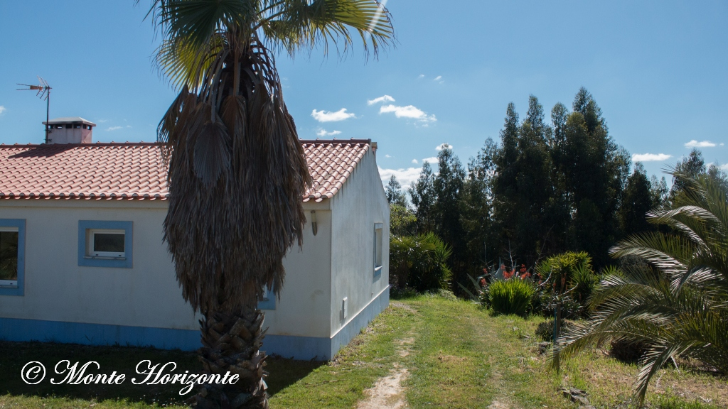Monte Horizonte Urlaub Casa Borboleta in Portugal