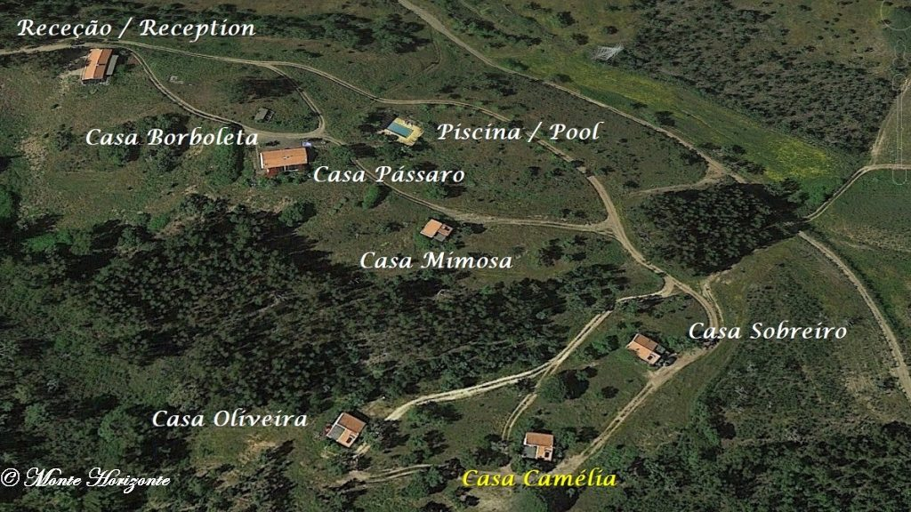 Urlaub in Portugal Monte Horizonte Casa Camelia