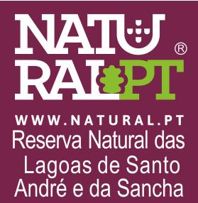 Monte Horizonte Narural.pt